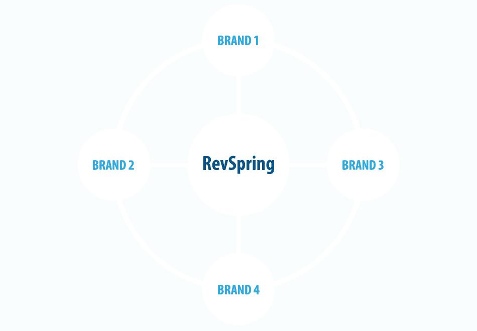 RevSpring brand cohesion